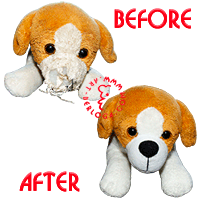 Restoration of a small dog.